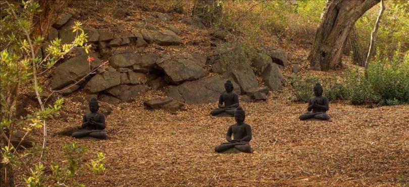buddhas in leaves medium